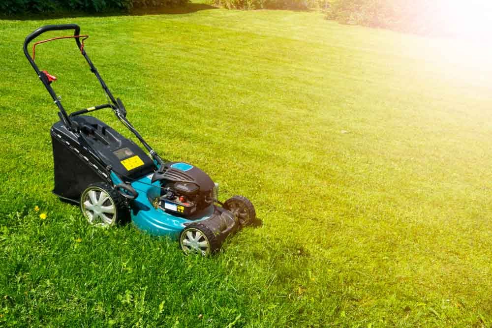 Best-Cordless-Electric-Lawn-Mower-Review